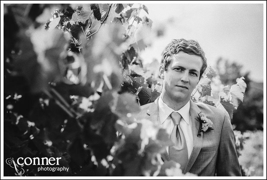 Chandler Hill Winery by St Louis Wedding Photographers (12)