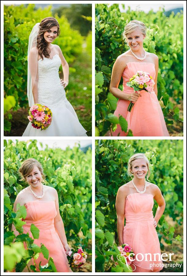Chandler Hill Winery by St Louis Wedding Photographers (16)