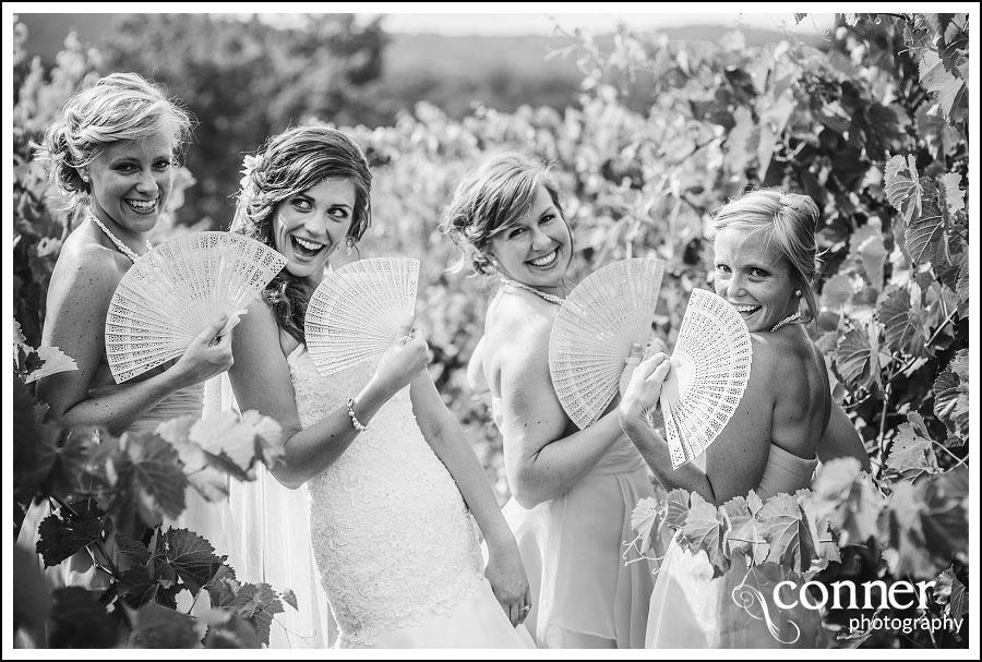 Chandler Hill Winery by St Louis Wedding Photographers (17)