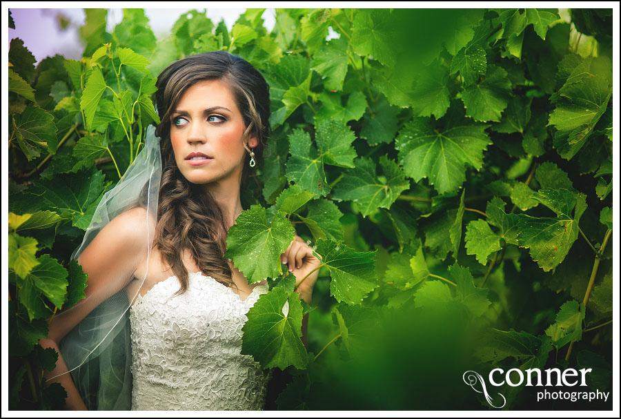 Chandler Hill Winery by St Louis Wedding Photographers (20)