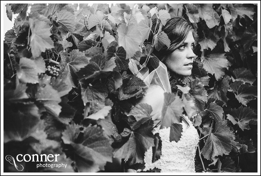Chandler Hill Winery by St Louis Wedding Photographers (21)