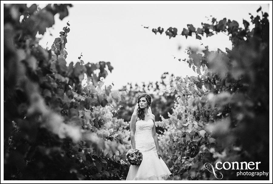 Chandler Hill Winery by St Louis Wedding Photographers (22)