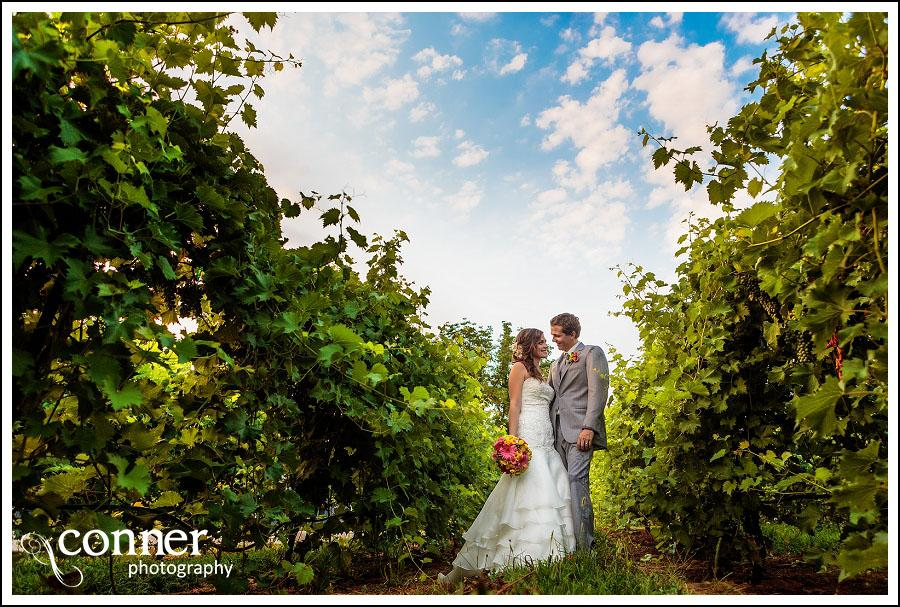 Chandler Hill Winery by St Louis Wedding Photographers (48)