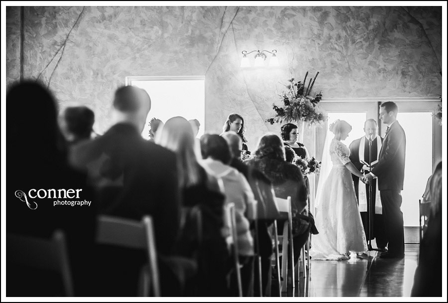 Villa Marie Winery Wedding Photos