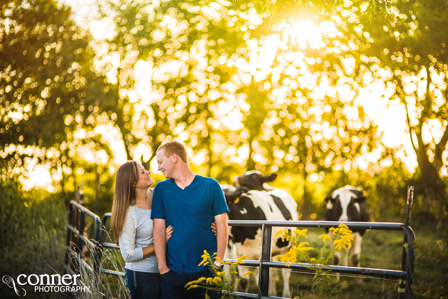 illinois dairy farm engagement photos